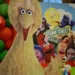 Sesame Street Birthday Party Decor Main