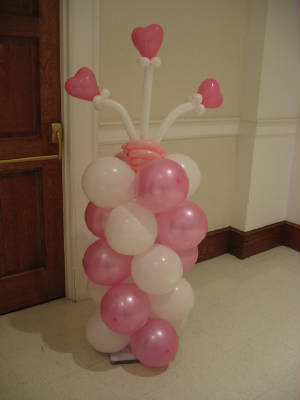 Pink and White Balloon Flowers