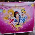 Happy Birthday Princes Banner Backdrop